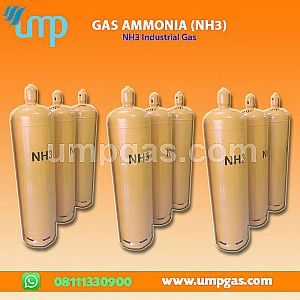 Distributor Gas Ammonia (NH3)